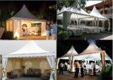 Tente extérieure de mariage de nouvelle tente du mariage 2016