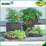 Цветки овощей ткани PE Onlylife растут мешок