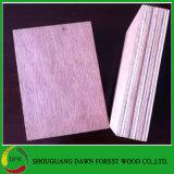 Contre-plaqué de Keruing de faisceau d'eucalyptus
