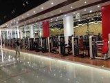 Machine bk-006 van de Gymnastiek van de Krul van bicepsen