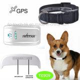 犬か猫またはヒツジまたはウサギTk909のためのカラーを持つ小型ペットGPS追跡者