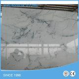 Плитки славного ландшафта белые мраморный для стены и настила