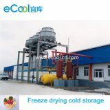 Super elevada capacidade de grande tamanho Super Baixa Temperatura de armazenamento a frio e Gele Equipamentos para congelar comida de secagem