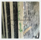 Lastra di marmo nera della Cina Italia per il controsoffitto della stanza da bagno e della cucina