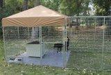 De professionele Vervaardiging verkoopt direct de Gegalvaniseerde Looppas van de Hond van het Staal