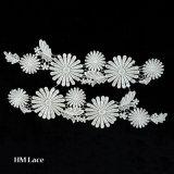 Form-Entwurfs-Polyester-weiße wasserlösliche Stickerei-Franse-Muffe D003