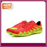 نمو يبيطر [إيندوور سكّر] جديد كرة قدم أحذية