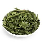 Stevia en bloc de prix usine d'extrait de fond de chicorée de poudre d'inuline