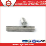 Carbone Steel Galvanized Threaded Rod DIN975 DIN976 Stud Bolt avec 2h Nut