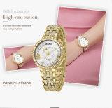 Роскошный wristwatch платья повелительниц способа водоустойчивый обеспечивает wristwatches ODM и признавает обслуживание OEM