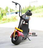 De Volwassen Brushless Autoped van Citycoco/de Elektrische Autoped van de Mobiliteit 500/800W 60V