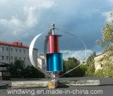 generador de turbina vertical de viento de 1kw48V Maglev