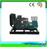 Ce aprobada 30kw insonorizados generador de biogás