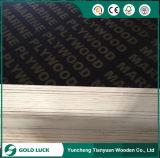 El concreto fenólico artesona la madera contrachapada marina para la construcción 1220 x 2440 milímetros