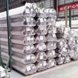 De Buizen/de Pijpen van 304/316 Roestvrij staal