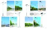 Alle in einem integrierten Straßenlaterneder Sonnenenergie-LED;
