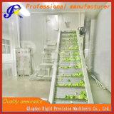 Desidratador do pepino da máquina de secagem de Dewagering da fruta e verdura