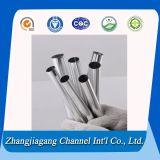 Quadrat und Round Aluminium Extrusion Tube für Indurstry Material