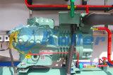 5 Tonnen/Tag automatische Commerical essbare Eis-Würfel-Maschine (CV5000)