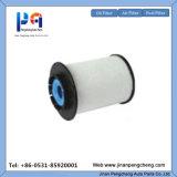 China Soem-Hersteller Spinnen-auf ursprünglichem QualitätsKraftstoffiltereinsatz für 30-Eco082, Adg02372, 96896403