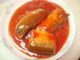 Gute Qualitätsin büchsen konservierte Makrele im Öl