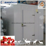Комната холодильных установок плодоовощей для клубники