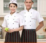 Uniformes de trabajo del hotel Cocineros