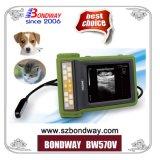De Veterinaire Scanner van uitstekende kwaliteit van de Ultrasone klank voor Paarden, Runder, Varkens, de Schapen, Honds, Katachtige, Ultrasone Machine van de Ultrasone klank van de Scanner van Pricepregnancy van de Sonde