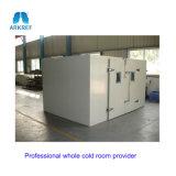 ポーク記憶の冷蔵室のための圧縮機の単位の交換
