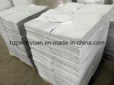 Fiberglas Foil Bag mit Printing