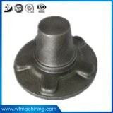 Le métal d'OEM a modifié fer de lance de fer/en aluminium/en acier de pièce forgéee pour le matériel