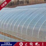 Высокое качество PE Mateial пластиковые сад туннеля пленки для сельского хозяйства