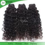 普及したインドの巻き毛のバージンのRemyの人間の自然な黒髪