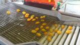 Unità di lavaggio dell'ortaggio da frutto del venditore dell'oro, selezionatrice della frutta