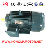 GOST Series/GOST Standard Series Drei-Phase Asynchronous Motor mit Iec