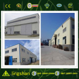 2016 nuovo Style Beautiful Steel Structure Warehouse per Storage