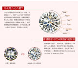 형식 Accessories Stainless Steel Jewelry Earrings (hdx1049)