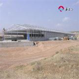 Snel bouw de Commerciële Huizen van de Braadkip