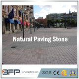 Pietra per lastricati naturale ciottolo grigio/rosso/giallo del granito per i lastricatori di paesaggio del giardino
