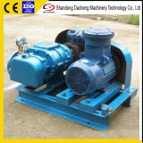 Dsr300 Most Popular Industrial Big Volume Roots Compressorblower for Inflatable