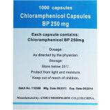 Cápsulas de Cloramfenicol 1000's / Bottle GMP Medicine