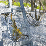 ステンレス鋼ケーブルロープの動物園動物階段バルコニーの網