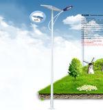 Luz solar de DC12V 24V 20W-200W para el alumbrado público solar poste