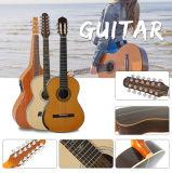 Guitarra elétrica contínua figurada exótica de Archtop Lp do bordo para a venda