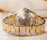 Reloj del acero inoxidable con el reloj unisex de la manera del ODM (WY-G17005B)