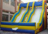 8м надувной слайд / Заводской прямой продажи на открытом воздухе (LY-SL256)
