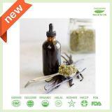 Natürlicher Stevia-Auszug Dropstevia Sirup