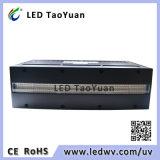 Lampe de séchage UV 395nm Machine à LED UV 800W Nouveau
