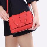 高品質熱い販売法デザイナー方法女性はCrossbody普及した袋を袋に入れる