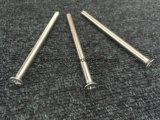Крест винта машины или Torx винт крепежной детали Csk Head/DIN7981 DIN7982 DIN7985
